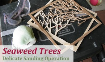 Seaweed Trees – Delicate Sanding Operation